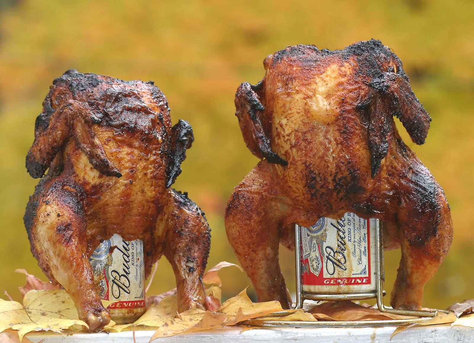 is beer can chicken any good
