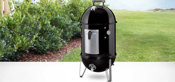 #2 weber smokey mountain
