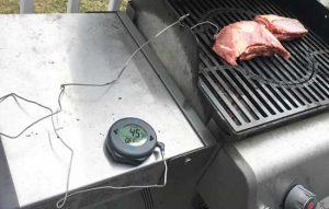 probe in meat
