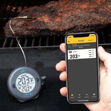DOT, Bluetooth Winner [Full Review]