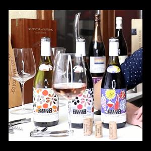 Nouveau Beaujolais Bottles